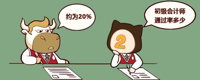初级会计师通过率多少